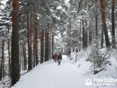 Ruta arroyo de la Chorranca; senderismo gratis madrid;trekking y senderismo